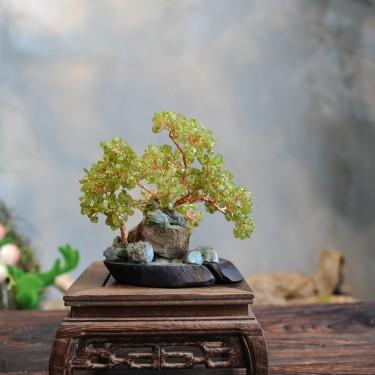Cây Ngọc Hưng Thịnh B1207